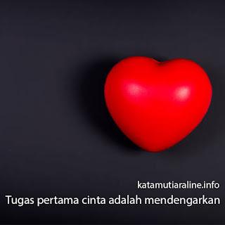 Tugas Pertama Cinta