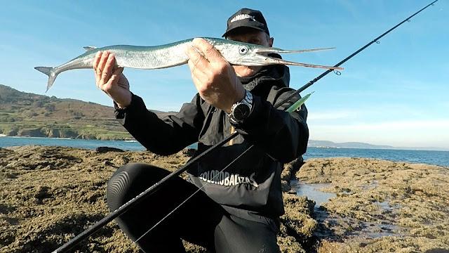 PORTADA%2BBLOG - La pesca del pez aguja con señuelos artificiales