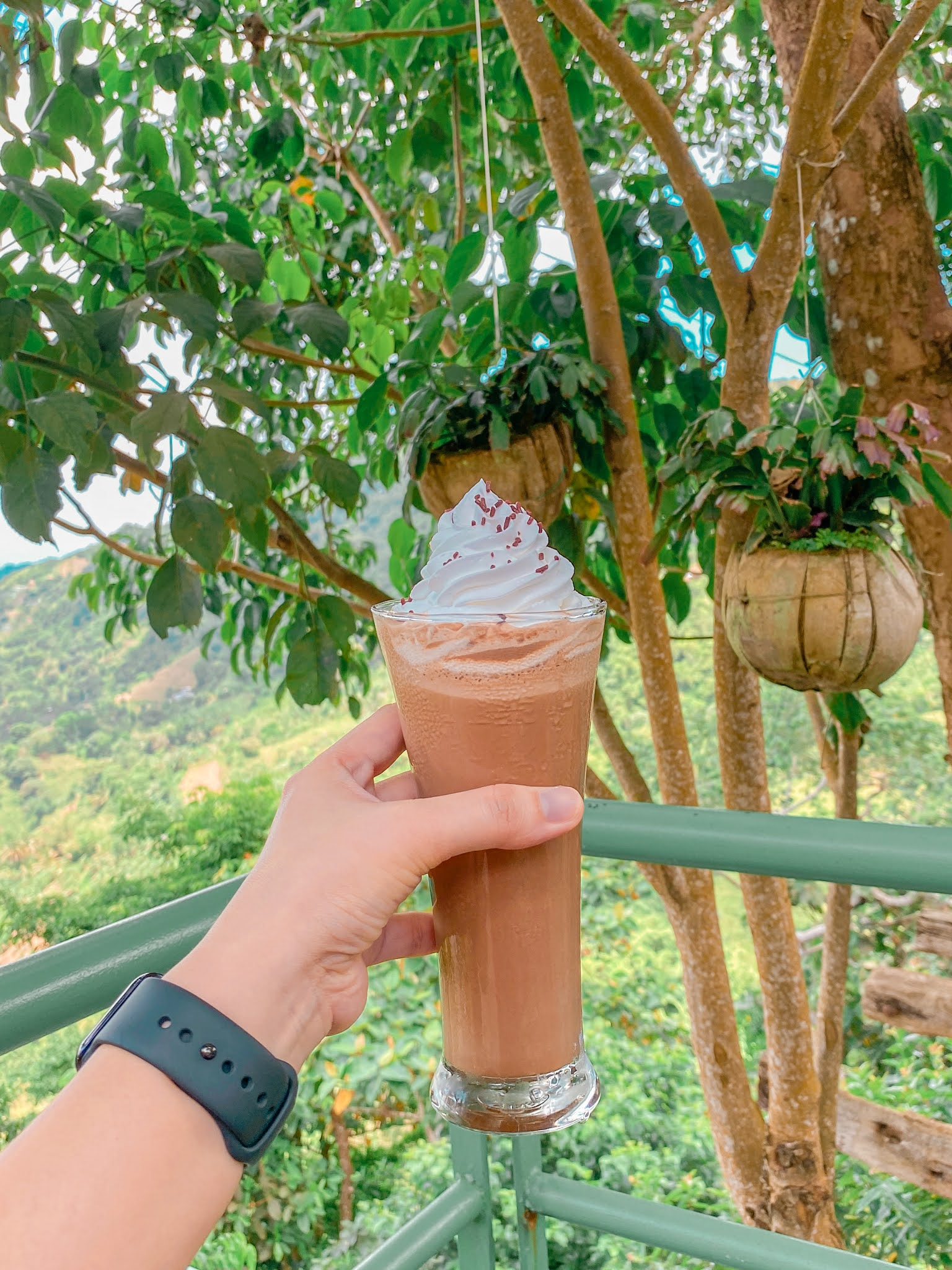 Lakeview Le Jardin: The Newest Must-Visit Garden and Restaurant  Up in the Mountains