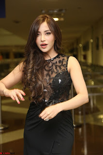 Angela Krislinzki in Transparent Black Gown at Rogue Movie Teaser Launch 1st March 2017 010.JPG