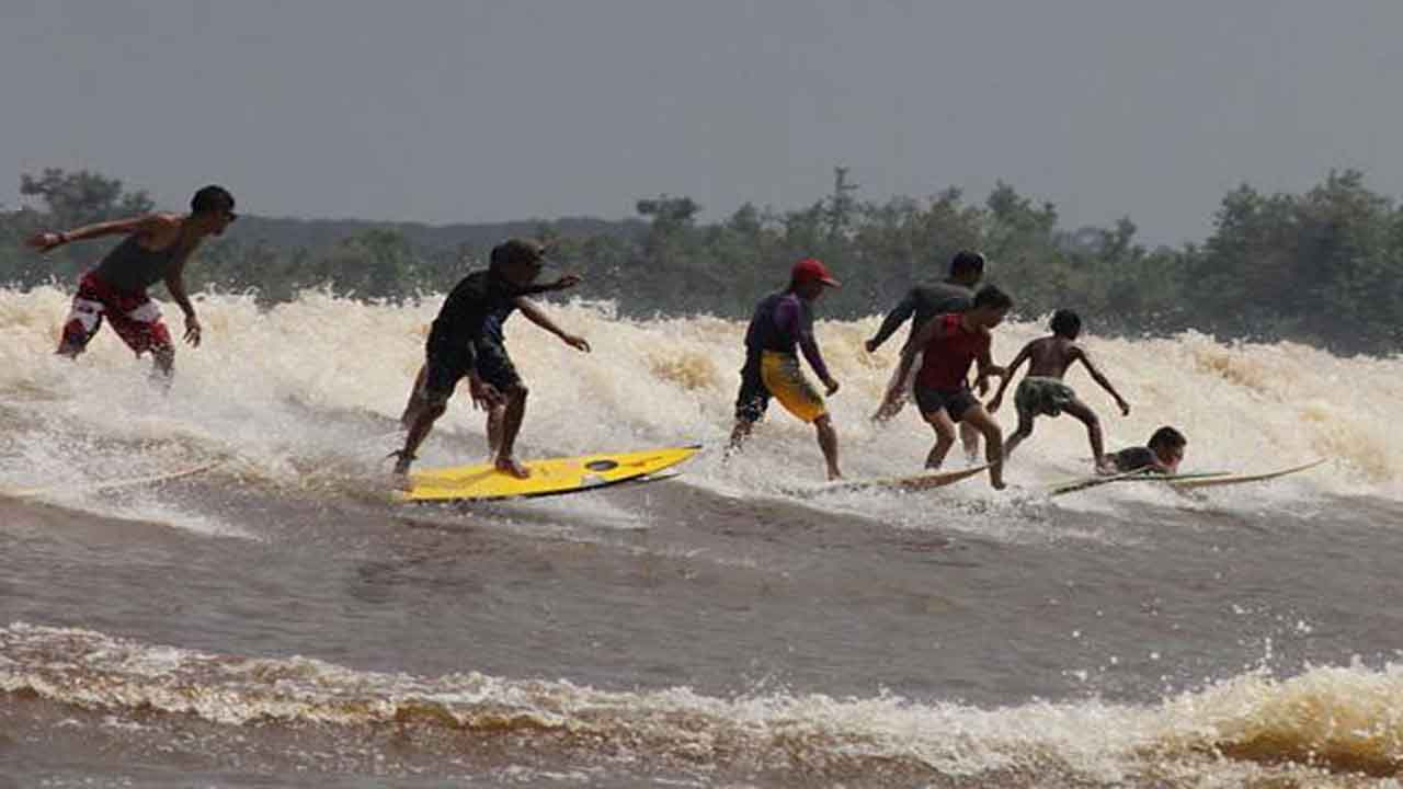 bono wave