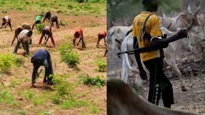 Seven Killed, 3 Missing As Herders/farmers Clash in Taraba Community (Photos)