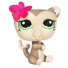 Littlest Pet Shop Collectible Pets Possum (#1015) Pet