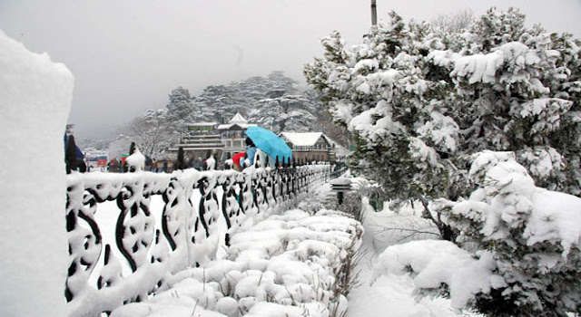 Shimla Attraction - Kufri in winter season