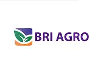 Lowongan Kerja PT Bank BRI Agroniaga Tbk Terbaru