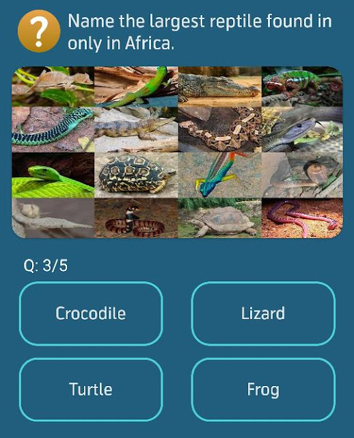 Name the largest reptile found in only in Africa.