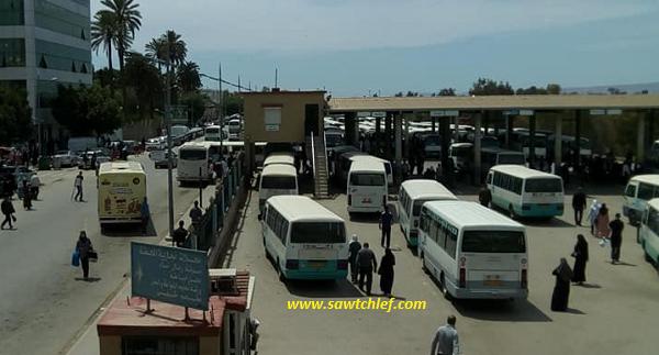 مديرية النقل تجمد منح تراخيص النقل بالشلف