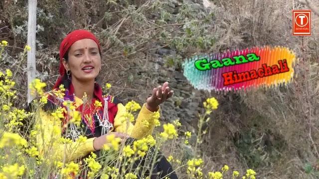 Teji Ngeniyen mp3 Download - Leela Thakur ~ Gaana Himachali