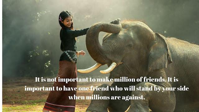 Friendship shayari  ,friendship shayari in english