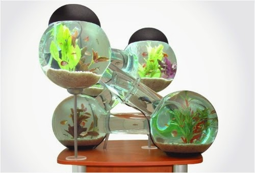05-Labyrinth-Maze-Aquarium-Fish-Tank-Opulentitems-www-designstack-co