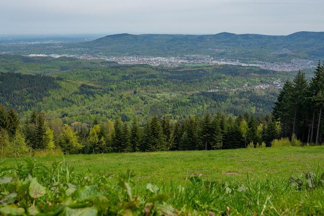 Premiumwanderweg Murgleiter | Etappe 1 von Gaggenau nach Gernsbach | Wandern nördlicher Schwarzwald 21