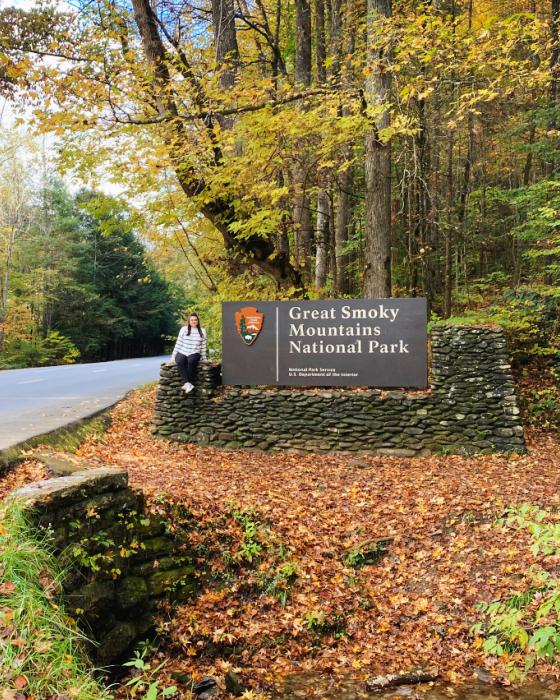 great smoky mountain national park entrances