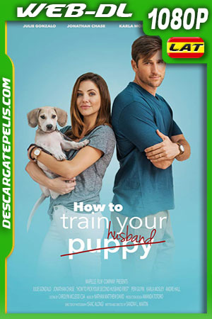 How to Pick Your Second Husband First (2018) WEB-DL 1080p Latino – Ingles
