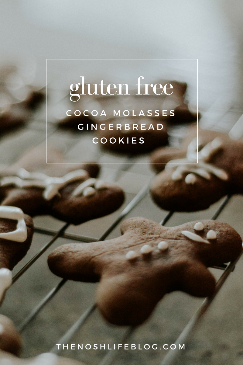 Gluten-Free-Cocoa-Molasses-Gingerbread-Cookies-The-Nosh-Life