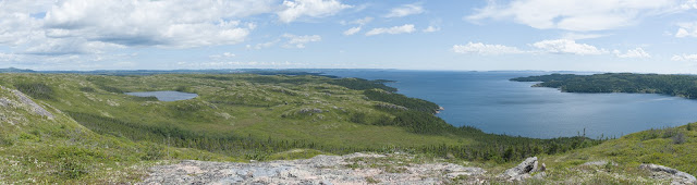 View from Big Rock Hill Garden Cove Newfoundland