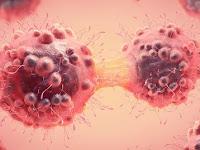 Benda dirumah Yang Bisa Picu Penyakit Kanker
