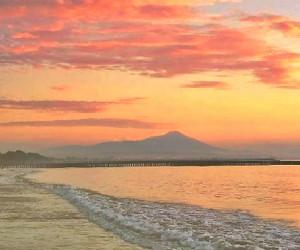 hotel dekat wisata pantai teluk penyu cilacap