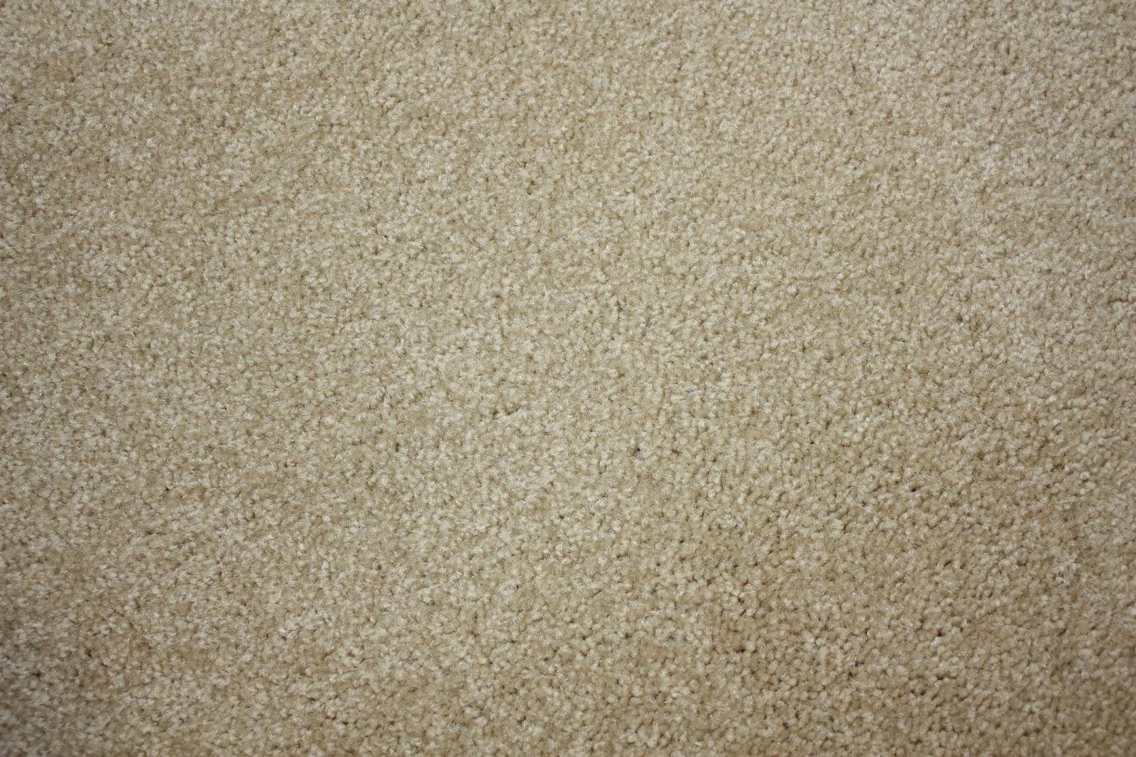 heidi schatze: Operation Listing: Carpet