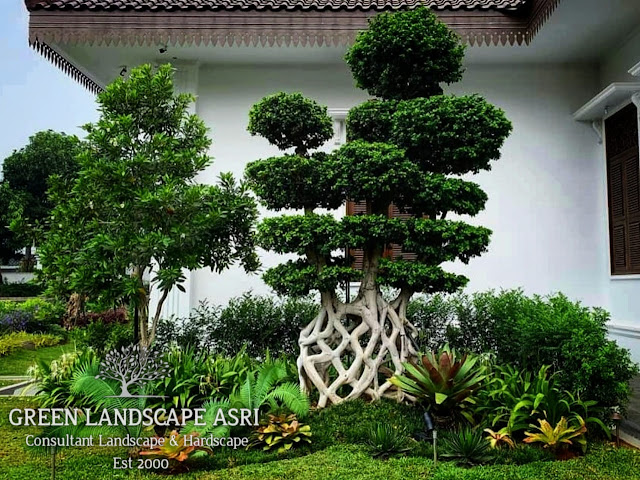 Tukang Taman Tuban | Jasa Pembuatan Taman Di Tuban Jawa Timur