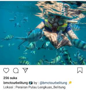 Bosan pantai, wisata bawah air bisa jadi solusi di Belitung-infobelitung