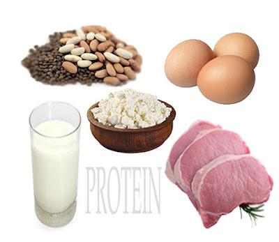 Bahan makanan protein