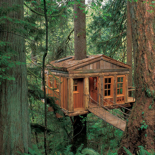 Amazing Tree House Wallpapers