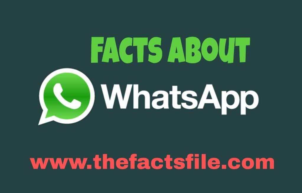 WhatsApp के बारे में 20 रोचक तथ्य,WhatsApp Facts in Hindi,Amazing facts about WhatsApp in Hindi,WhatsApp के बारे में जानकारी और मजेदार तथ्य