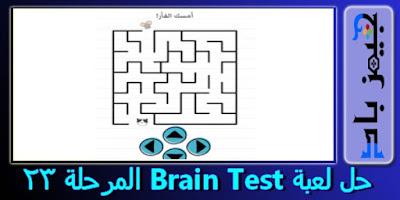حل المستوي 23 Brain Test