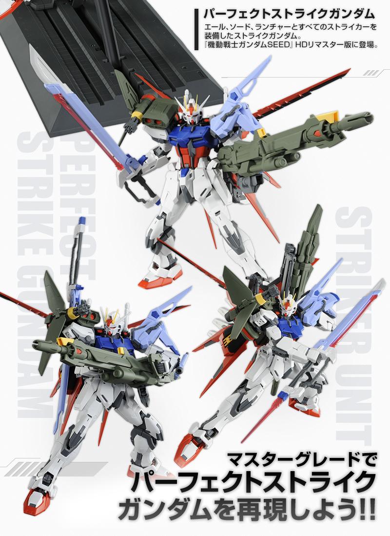 P Bandai Mg 1 100 Aile Strike Gundam Striker Ver Rm