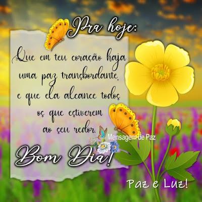 Que em teu coração  haja uma paz transbordante, e que ela alcance todos os que estiverem ao seu redor, Bom Dia! Paz e Luz!