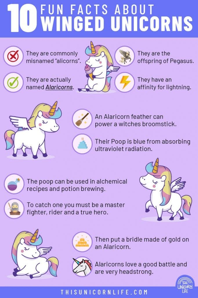 what-is-a-unicorn-with-wings-called-infographic