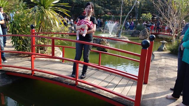 festa jardim japones : festa jardim japones:Reino de Morango ♥: Festa da Cerejeira de Garça