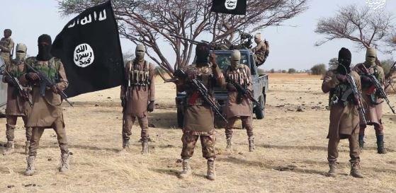 Troops kill eight B'Haram commanders