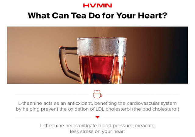 L-Theanine: Tea's Amino Acid for Overall Wellness