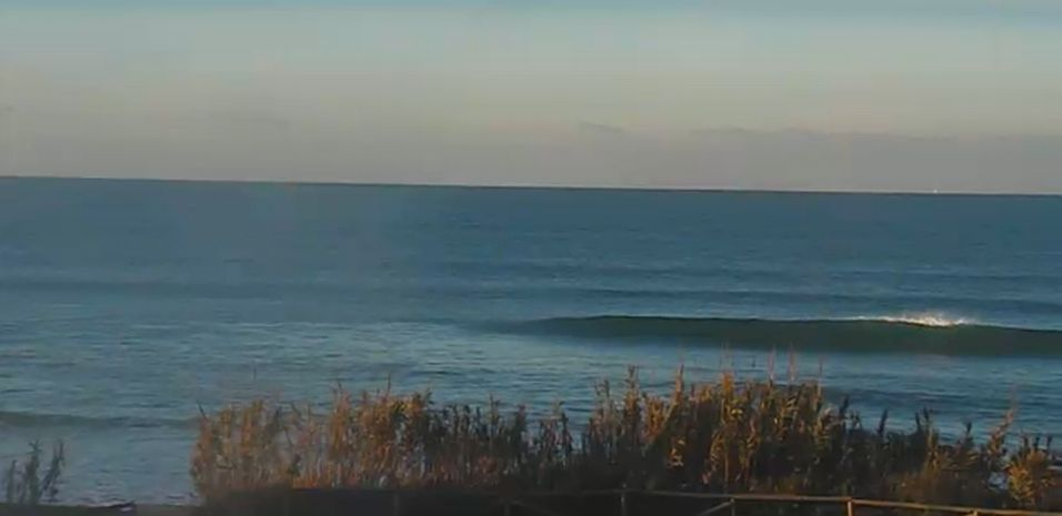webcam el palmar