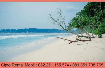 Pantai dimalang, Pantai Sendiki, Pantai indah Dimalang
