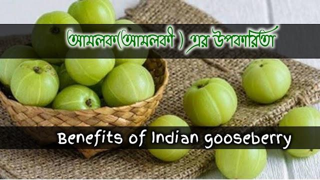 Herbal properties and benefits of 'Amalak' (Amalki)- আমলক(আমলকী ) এর বনৌষধি গুনাগুন ও উপকারিতা