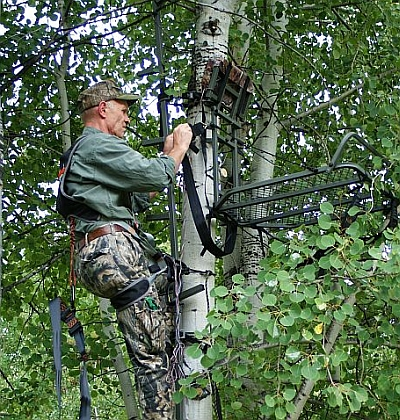 Whitetail Deer Passion The Factors That Make A Perfect