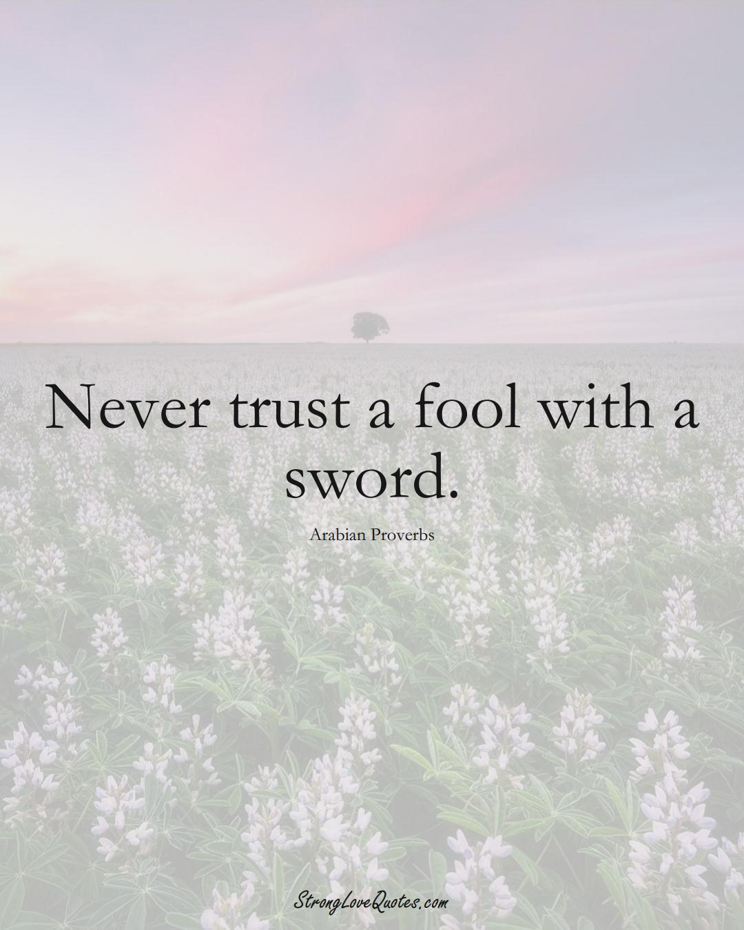 Never trust a fool with a sword. (Arabian Sayings);  #aVarietyofCulturesSayings