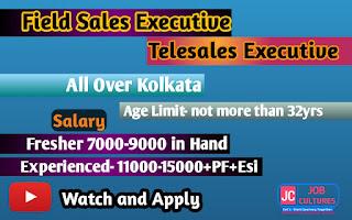 Telesales &Field Sales Executive
