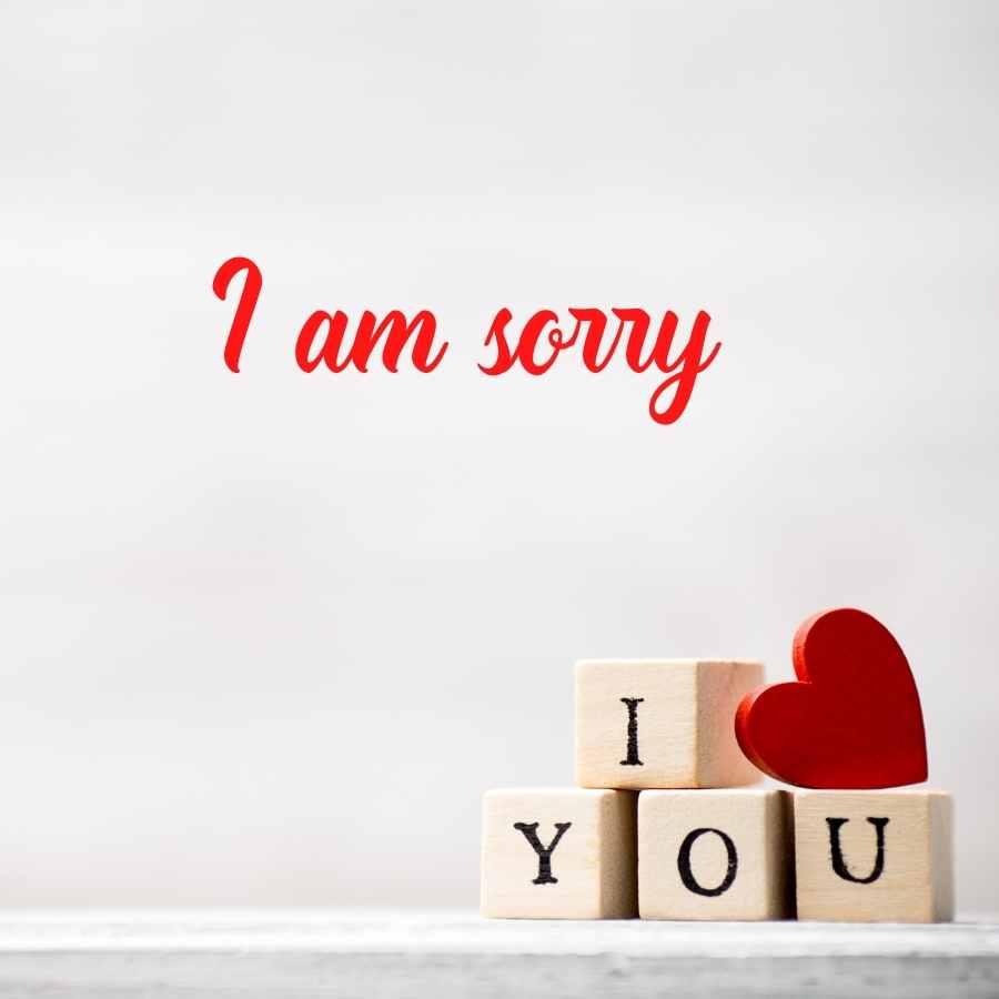 sorry image boy