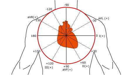 CHAPTER 8. AXIS AND HEXAGONAL DIAGRAM. - Heart And Teeth