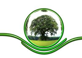 maud-fontenoy-ecologie