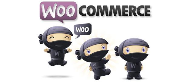 "WooCommerce Hosting Tips: Fix ""Your theme does not declare WooCommerce support"" Message"