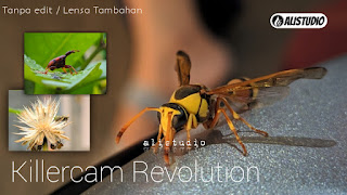 Foto Macro Gcam Killercam Realme 5 Pro