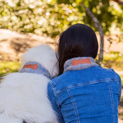 Great Pyrenean Mountain Dog and owner wear matching scarves viewed from the back