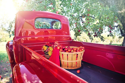 A shiny red truck parked under some apple trees with a basket of apples, some flowers and a blanket in back. Photo by Jill Wellington on Pixabay.