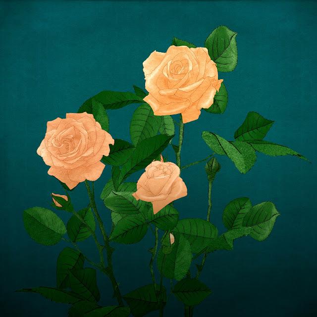 cuatro rosas, color de piel