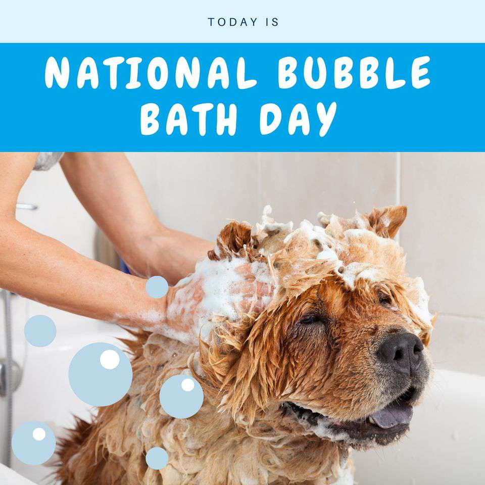 National Bubble Bath Day Wishes Pics