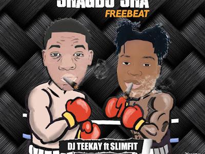 DJ Teekay Ft Slimfit ~ Shoma Shagbo Sha Freebeat
